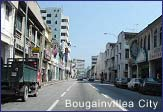 bougainvillea city