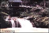 trkking